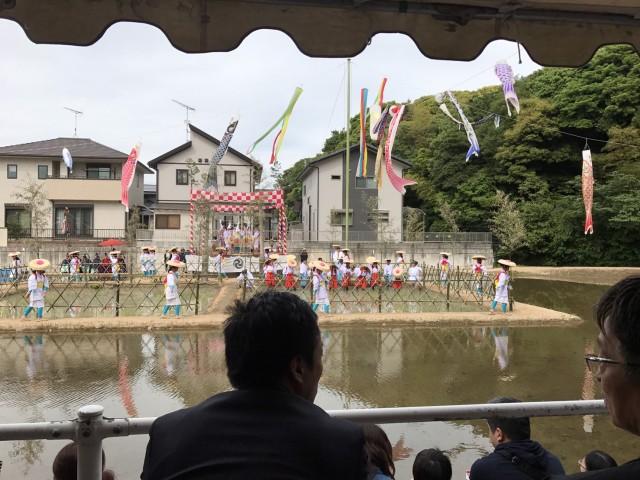 170521お田植祭