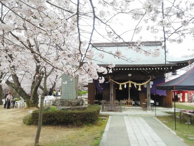 2016-04-03桜山拝殿